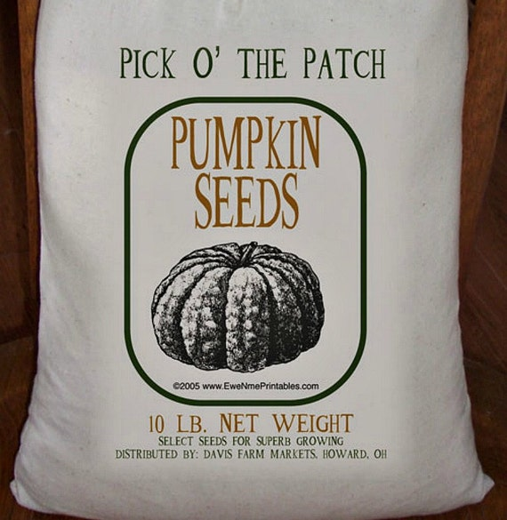 Feed Sack, Flour Sack Bag, Prim Decor, Pumpkin Sack, Country Decor, Muslin Bag, Vintage Feed Sack, Cotton Sack, Pick O The Patch Seeds