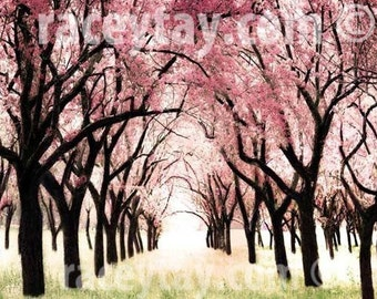 Cherry Blossoms, Pink Trees Print, Baby Girl Nursery Decor, Cherry Trees, Pink, Green, Girls, Nature Photography