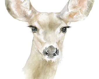Doe Deer Watercolor Painting 5 x 7 Giclee Print Reproduction Nursery Woodland Art