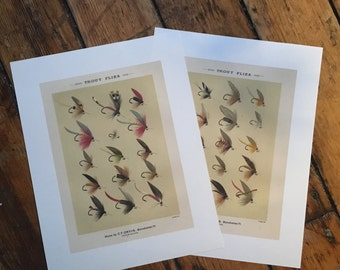 TROUT FISHING PRINTS -  fly tying - set of glorious fly fishing bait - set of two prints of fishing tackle - orvis flies