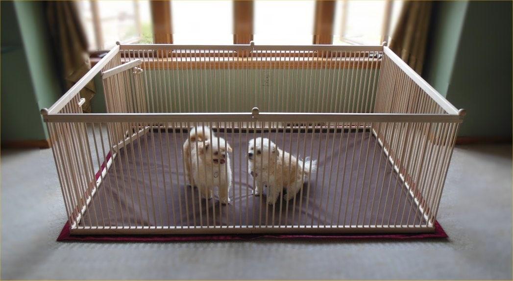 Waterproof Floor Mats For Pets Gurus Floor