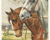 Whydale Hunters - Vintage 1935s Artist-signed Fox Hunt Horses Postcard