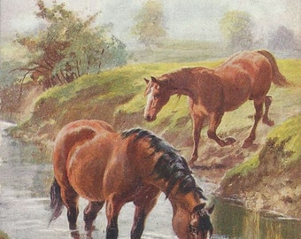 A Thirsty Day - Antique 1910s Tuck's Oilette Artist-signed Pastured Horses Postcard