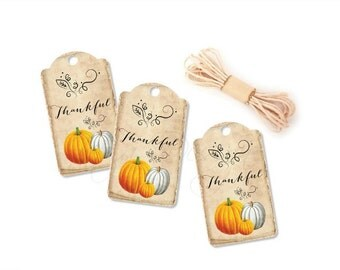 Thanksgiving Tags, Fall Wedding Favor Tags, Mason Jar Tags, Pumpkin Hang Tags, Bridal Shower, Thanksgiving Decor, Gift Packaging, Set of 10