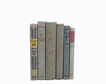 Gray Blue Books, Rustic Antique Decorative Books, Shabby Chic Book Decor, Old  Book Set, distressed Book, BOok Collection, Book Stack