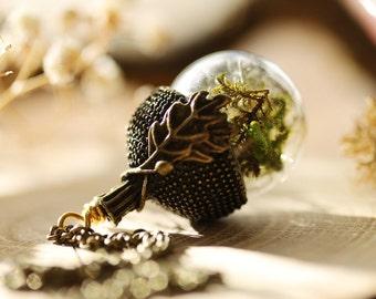 Real moss acorn necklace, dried plant necklace , acorn locket , gift from Ireland , terrarium jewellery , woodland terrarium #C12