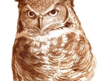 beer art, Great Horned Owl, painted using beer, animal, bird, pub art