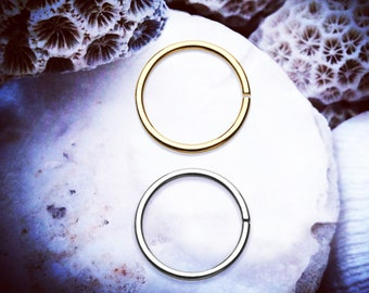 2 Pcs Bendable Nose Ring | Gold Silver | 1/4 6mm 5/16 8mm 3/8 10mm 22G 20G 18G Cartilage Hoop Septum Ring Earring Helix Lip Rook Piercing