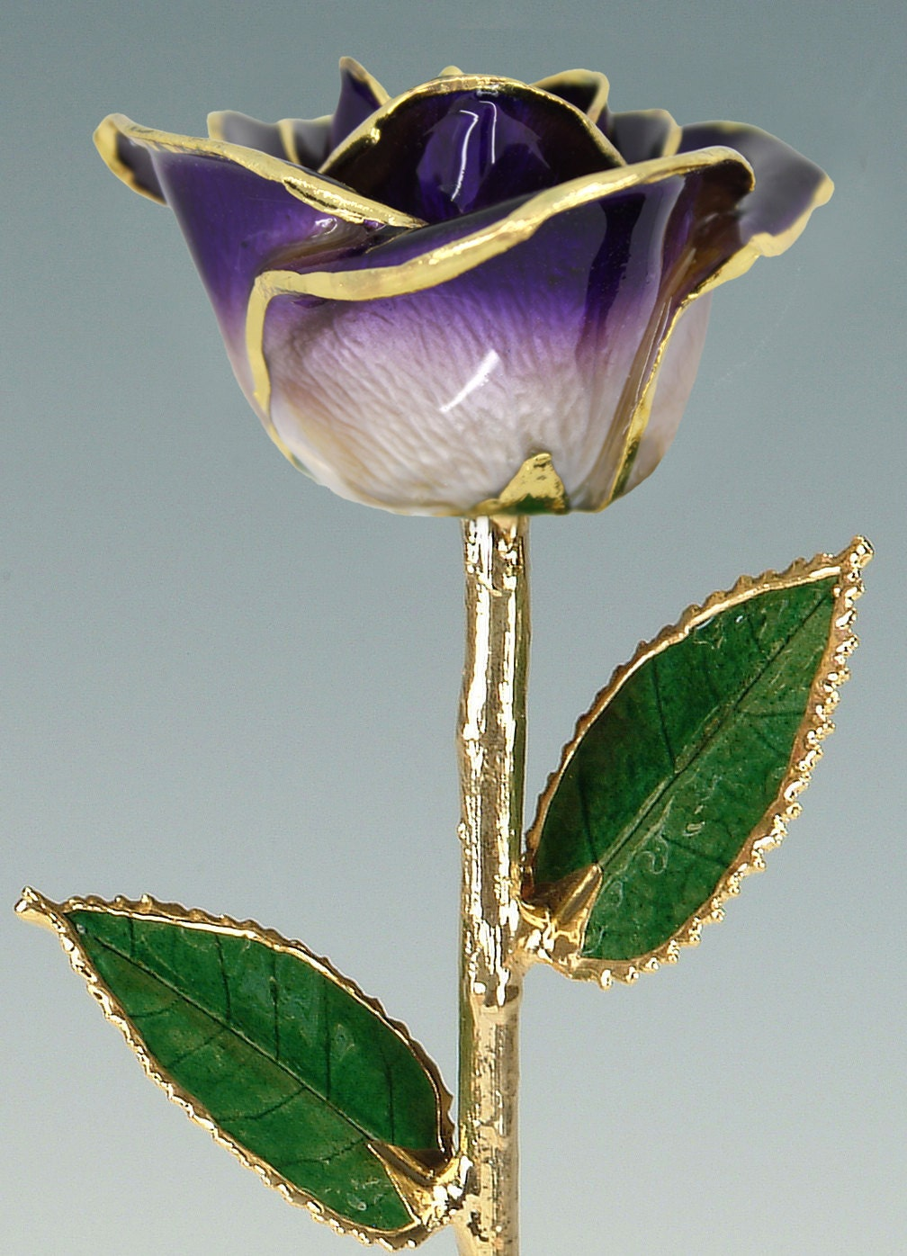 2 Tone Purple 24k Gold Rose By Living Gold Real Rose Dipped