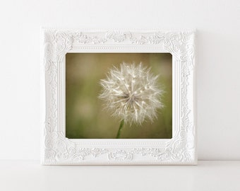 Dandelion Photo - Botanical Print - 5x7 Photograph - Fine Art Flower Photo - Nature Photo - Dreamy Photography - Bedroom Home Decor