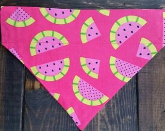 Watermelon Bandana | Summer Dog Bandana | Over the Collar Dog Bandana
