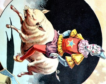 Circus Meragerie - 1890 Print -  CIRCUS CLOWN Riding White PIG  -  Fine Quality Professionally Matted Antique Lithograph Ready to Frame