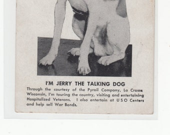 Jerry The Talking Dog Read Back To Get His Full Bio,Words He Speaks etc,Does Charity Work, Unused Postcard,MUST SEE