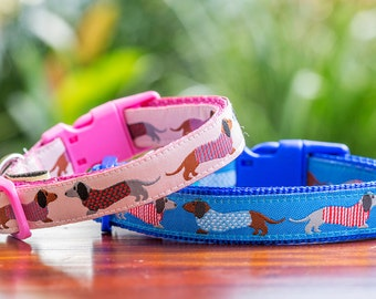Dachshund Print Dog Collar  -Australian Made