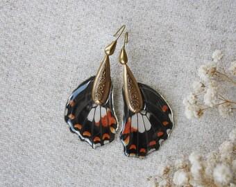 Earrings from real butterfly wings