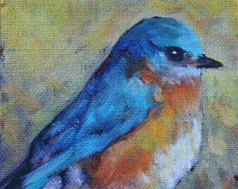 Bluebird  4x5