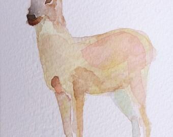 deer original watercolor