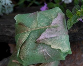 Leaf soap - green kelp & parsley olive oil soap - Totoro