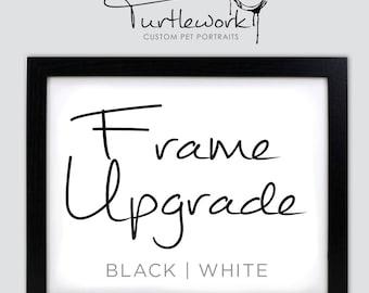 Frame Upgrade