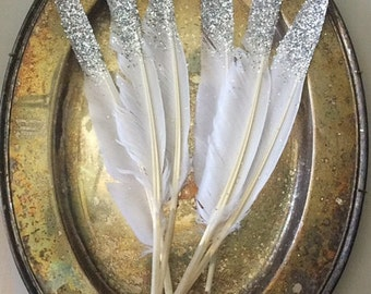 Glitter Feathers, Silver
