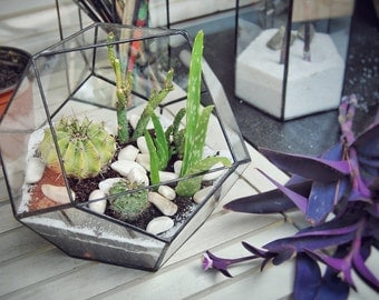 Geometric Glass Terrarium, Handmade Planter, Indoor Gardening, Glass Box,  Modern Planter,