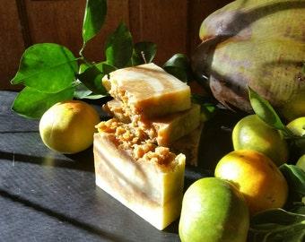 Tropical Tangerine - Coconut, Oat, Goat Milk, Aloe Soap