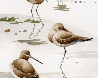 Set of 2 Sand Pipers Art Prints - Watercolor Painting - Signed by Artist DJ Rogers - Wildlife - Wall Decor