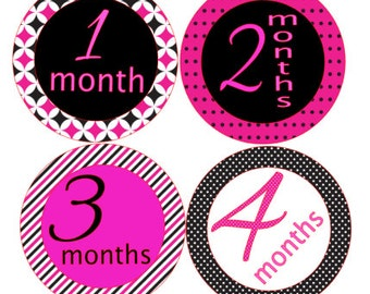 Monthly Baby Milestone Stickers- Baby Shower Gift- little girl