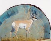 Pronghorn Oil Painting on...