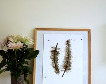Poster A3 black feathers, nature inspired home