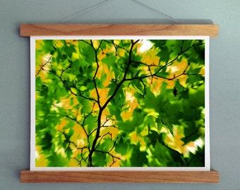 Canvas Print - Photography Print,  Blurred Trees Print, Wall Art, Wall Decor Print, Minimalist Photography Print, Rolled Canvas Wall Art