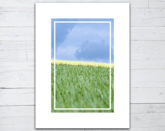 Photo print - Blue yellow and green