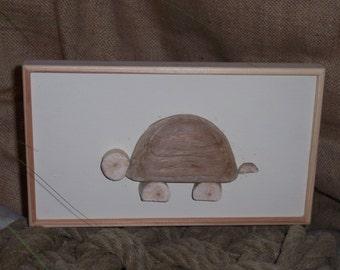Driftwood tortoise