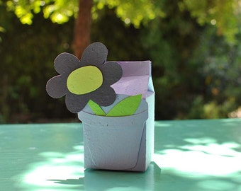 """In BOX """"card that sprouts"""" and SEMINABILE can be used as a WEDDING FAVOR for parties and events"""