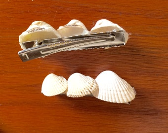 Seashell Hair Clip Barrettes with Surf Tumbled Cockle Shells from Cape Cod Bay 2.5 Inches Long Set of 2 Perfect Coastal Hair Accessory