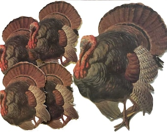 Turkey Thanksgiving Drink Coasters or Hot Pad