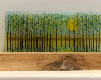 Sundhine woods