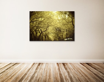 "Central Park Canvas Art, Tree Photography, Yellow Green Wall Decor, New York City Canvas Art, Nature Photography - ""Come To Me"""