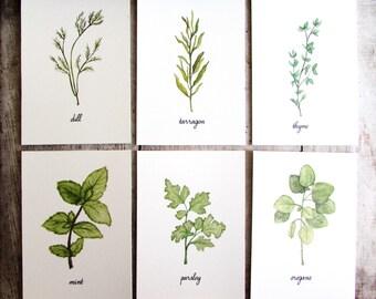 Kitchen Herbs Watercolor Illustration Art Print Set of 6