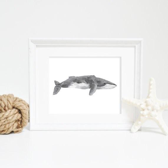 Fin Whale Art, Fin Whale Print, Nautical Art Print, Whale Decor, nautical decor, nautical nursery, nautical wall art, watercolor whale