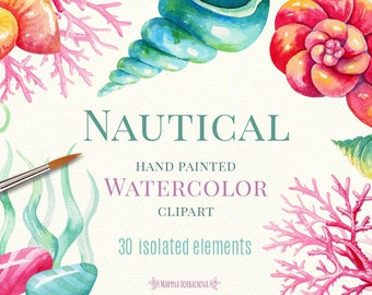 Nautical watercolor clipart. Watercolor sea shells, stones, weeds. Hand painted clipart.