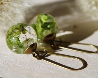 Real fern  resin earrings Mini terrarium earrings Flower earrings Dried leaf jewelry Botanical Jewelry Nature inspired gift for her Cristmas