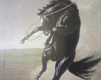 Signed C.W. Anderson Thoroughbred Horse Print
