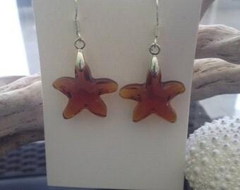 Espresso Glass Starfish Earrings