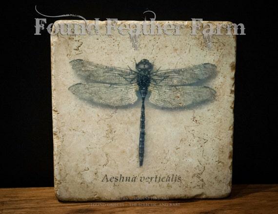 Stone Dragonfly Trivet