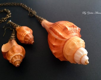 Natural seashell jewellery set, real sea shell necklace and earrings, Beach Set, seashell jewellery, boho shell set,  summer necklace