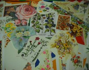 54 Piece Ephemera Pack Floral Flowers Vintage Images Collage Mixed Media Altered Art Journals Scrapbooks