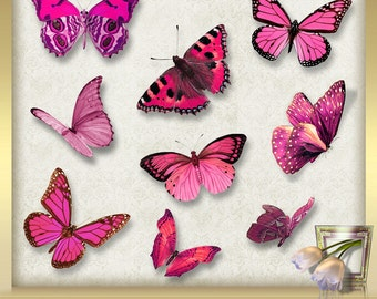 10 Butterflies Clip Art Vol. 1 - Butterfly Overlays -  Photoshop Overlays - Butterfly Overlay -  pink Butterflies -  Instant Download - png