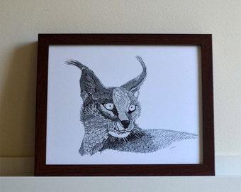 "Lynx Cat, Texture Illustration - print of original pen drawing 8""x10"""