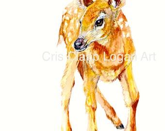 Baby Deer Original Doe Watercolor Painting Art by Cris Clapp Logan